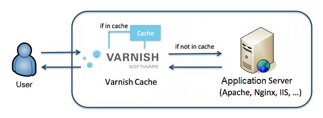 How to Optimize Your Website's Speed with Varnish Cache
